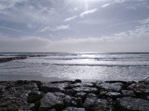 Los oceános del mundo para proteger